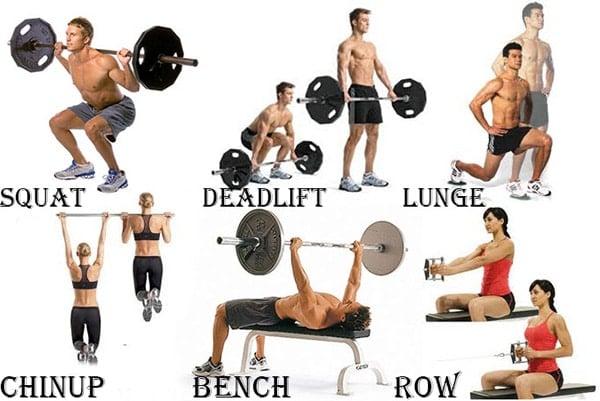 ท่าออกกำลังกายเพิ่มน้ำหนัก