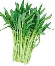 สรรพคุณของผักบุ้ง