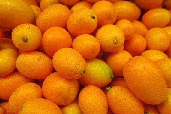 รูปส้มจี๊ด
