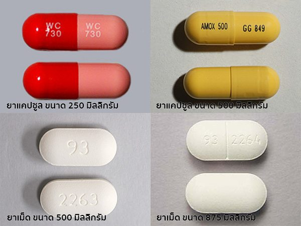 รูปแบบยาอะม็อกซีซิลลิน