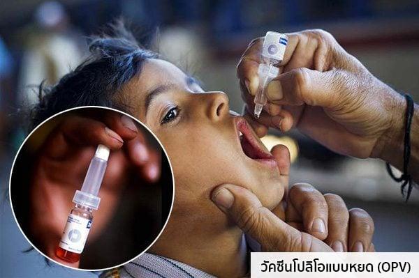 วัคซีนโปลิโอแบบหยด (OPV)