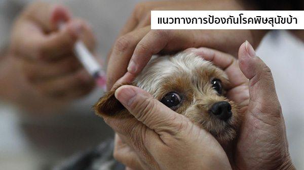 ป้องกันโรคพิษสุนัขบ้า
