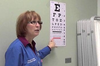 การตรวจวัดสายตา