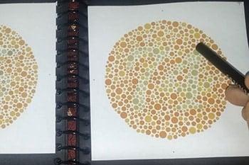 การทดสอบการมองเห็นสี